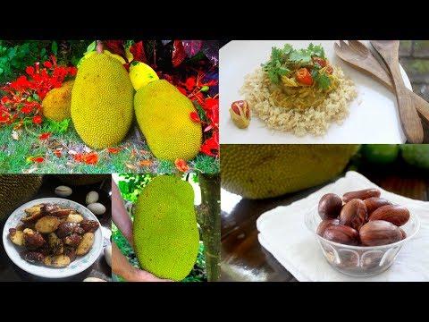 Jackfruit Seeds & Curry Recipe - How to Cook and Eat Jackfruit - 2 Ways