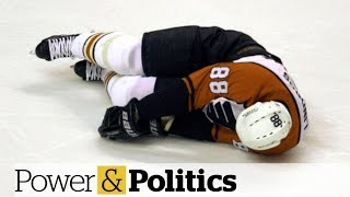 Former NHL hockey player and politician to testify at concussion committee | Power & Politics