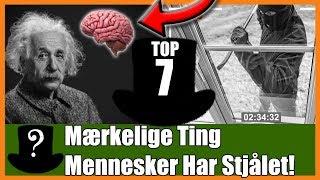TOP 7 Mærkelige Ting Mennesker Har Stjålet!