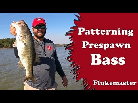 Bass Fishing - Finding a Pattern During the Pre-Spawn