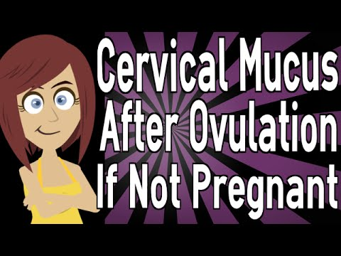 Cervical Mucus After Ovulation If Not Pregnant