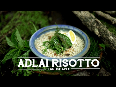 Reforestation, Indigenous Tribes and Filipino Adlai Risotto Arroz Caldo - Landscapes Episode 5