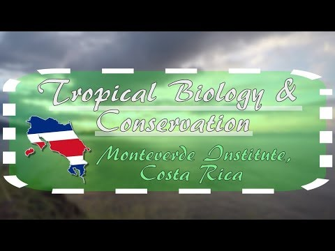 Study and Research Tropical Biology in Costa Rica!