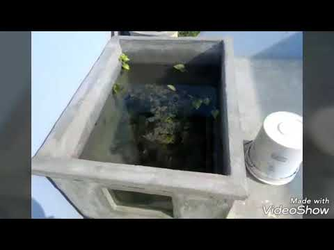Home made Fish tank Simple in 500l