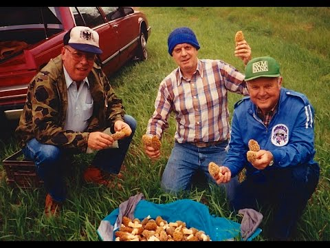 Morel Mushroom Hunter: A Son's Story about His Father's Passion