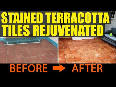 Terracotta Tile Cleaning Cambridge