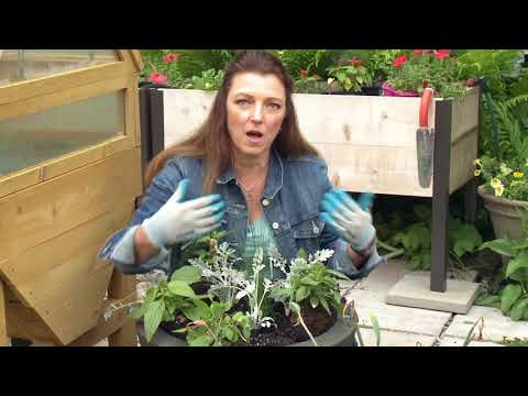 Easy as 1 2 3 Container Garden Planting How To