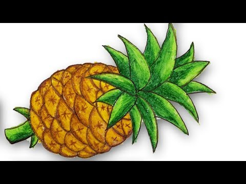 How to draw pineapple.Step by step(easy draw)