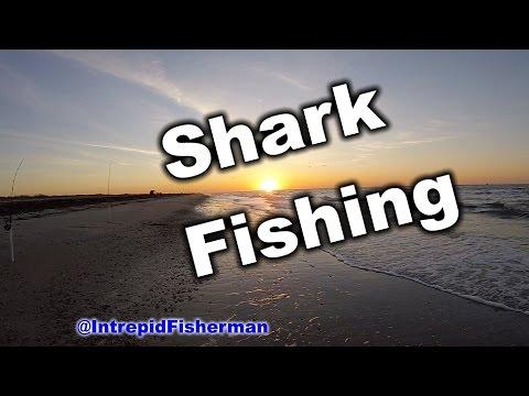 Shark fishing Bolivar High Island with Catfish fun night fishing for sharks