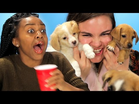 Drunk Girls Get Surprised With Puppies