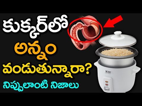 Shocking Facts about Cooked Rice in Electric Cooker | Unknown Facts in Telugu | VTube Telugu