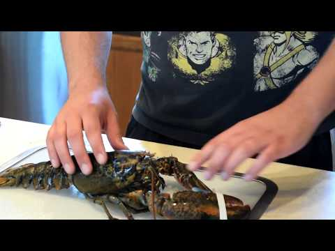 COOKING LIVE MAINE LOBSTER WITH A SECRET TRICK!!! PLUS STONE CRAB CLAWS!!