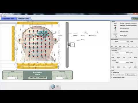 09b nmr simulation explanation (IB medical physics)