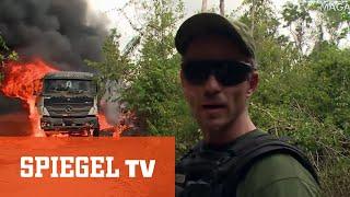 Kahlschlag im brasilianischen Urwald: Unterwegs mit einem Sondereinsatzkommando