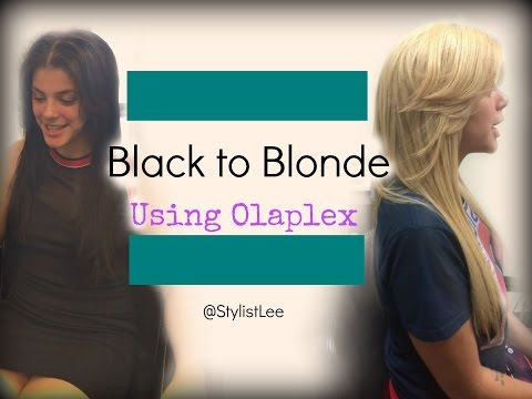 Black to Blonde Hair | Olaplex | No Breakage| West Hollywood Hair Salon | Stylist Lee