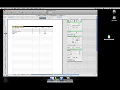 Excel Mac 2008 HOW TO format including currency