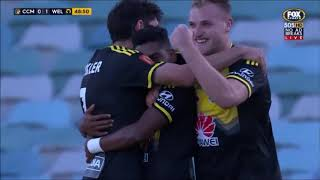 Roy Krishna - All Wellington Phoenix goals