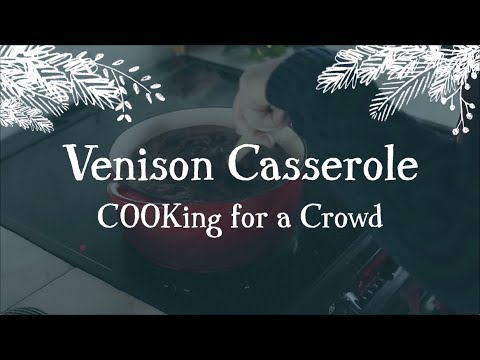 Venison Casserole for a Crowd