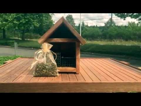 Crown Bees How to Video:  Placing Summer Leafcutter Bees
