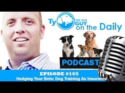 Episode #165 - Hedging Your Bets: Dog Training As Insurance - Utah Dog Training