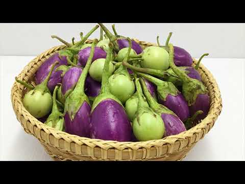 Effective Brain Function Possible With Eating Eggplant - Remove Stomach Pain With Egg Plant