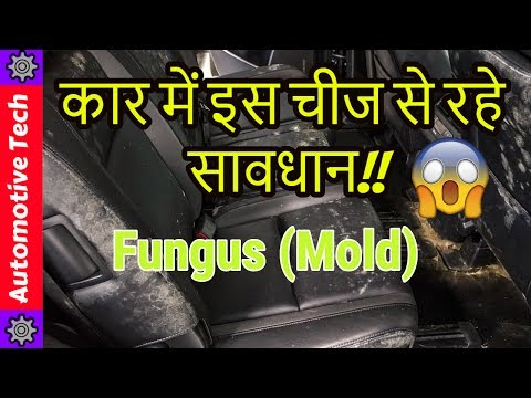 Car Fungus🔥(Mold) problem in monsoon.☔|How to protect your car Interior,lather seats💺in monsoon|