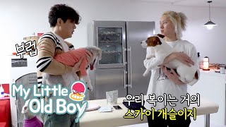 "Kim Hee Chul ""Why would they pee between the mats every time?"" [My Little Old Boy Ep 182]"