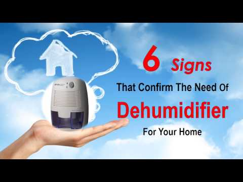 6 Signs That Confirm The Need Of Dehumidifier For Your Home