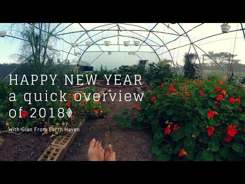 HAPPY NEW YEAR From Earth Haven!!  2018 quick reviews to 2019