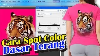 Cara Pecah Warna | Spot Color | Dasar Terang (Part 2)