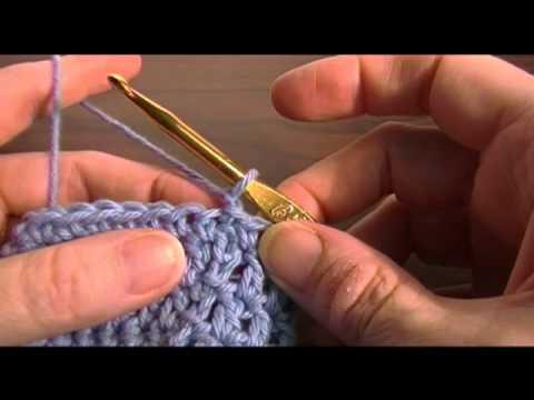 Crochet a Can & Bottle Cozy