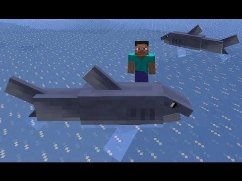 Minecraft: how to find sharks - (minecraft sharks)