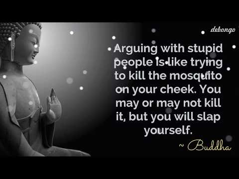 Arguing with stupid people | Quotes