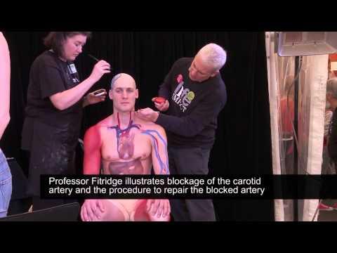 Anatomy Body Painting