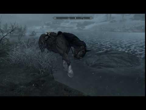 Someone get this horse a coat!   [Skyrim]