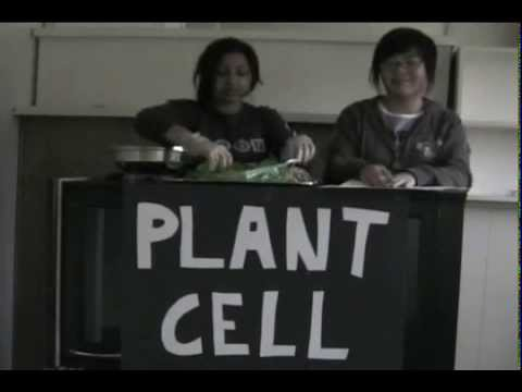The Plant Cell: Jello!