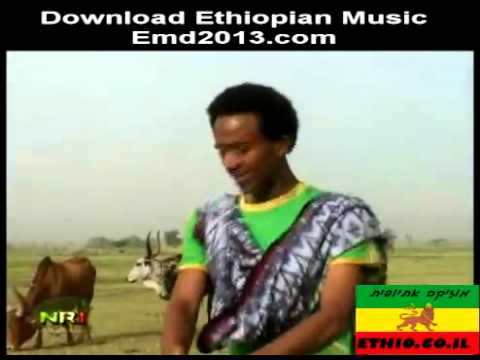 The Easiest New Ethiopia Music 3gp Mp4 Video Download {Fctiburonesrojos}