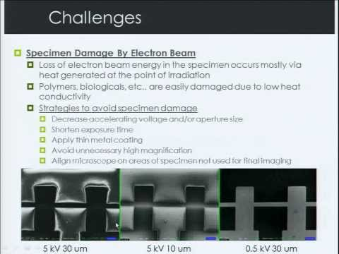 NACK Course Notes:  Advanced Scanning Electron Microscopy Lecture 2