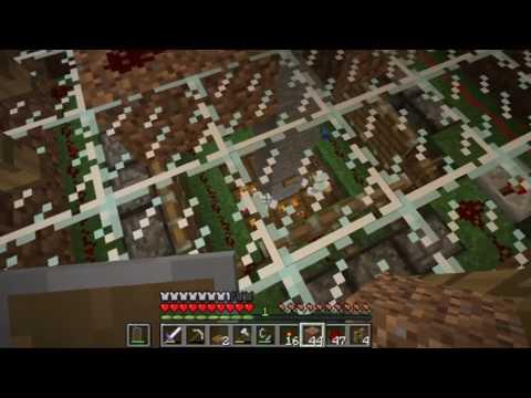 Minecraft Chicken Auschwitz