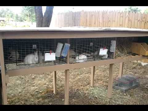 Build a Rabbit Hutch: Materials Needed