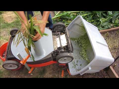Chop Corn Stalks Using An Electric Lawn Mower