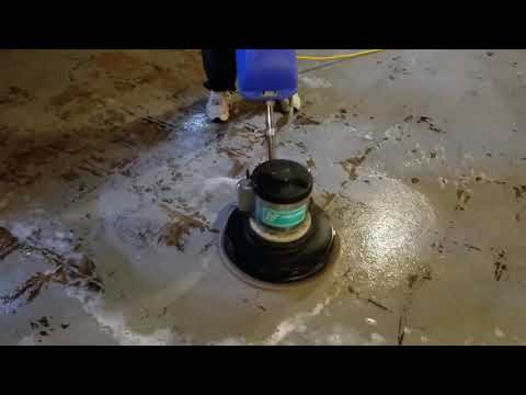 Concrete slab steam cleaning due to animal urine