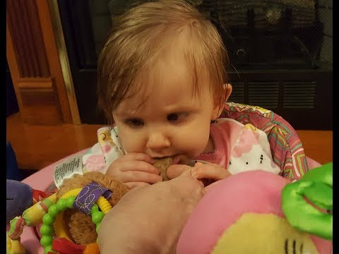 Teething Cookies - The Hillbilly Kitchen