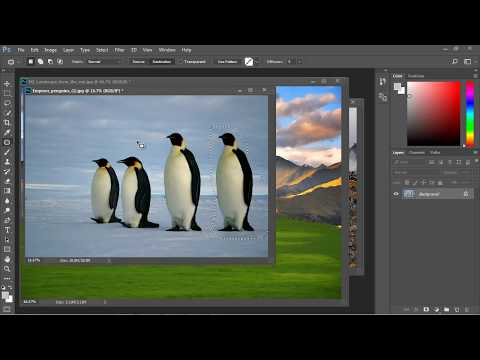 Photoshop Tutorial for Beginners - 10 - Patch Tool