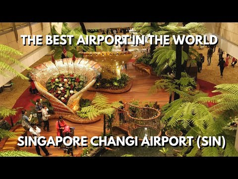 The Best Airport in the World: Singapore Changi Airport