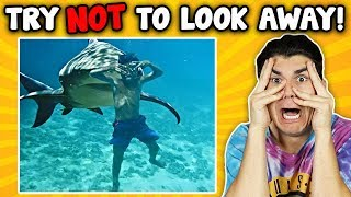 TRY NOT TO LOOK AWAY CHALLENGE! (IMPOSSIBLE)