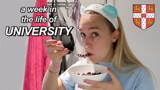 a week in the life of uni