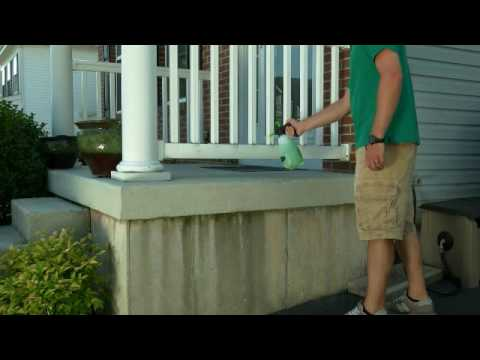 Spray Away Moss Mould lichen and Algae Remover