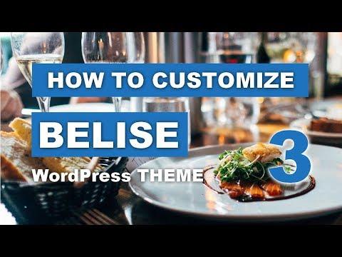 How To Customize Belise WordPress Theme #MULTIPURPOSE DESIGN