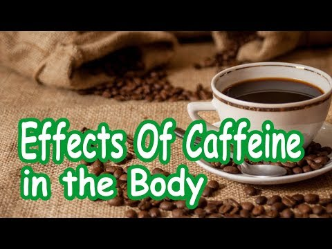 Effects of Caffeine in the Body  | You Must Know